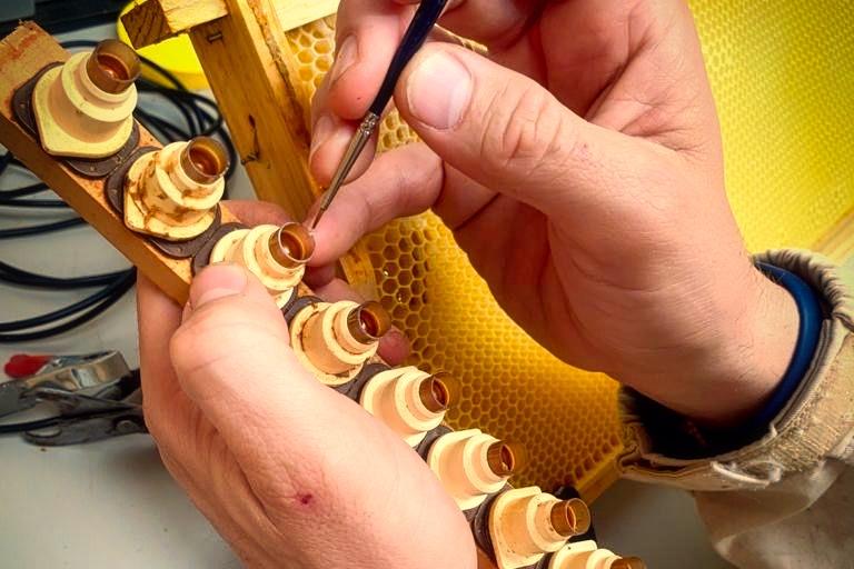 Abérica curso de apicultura